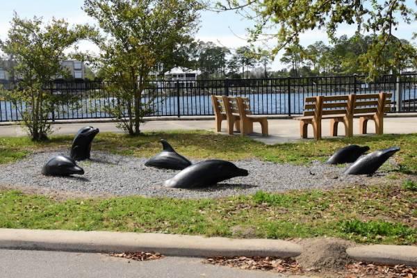 Dolphin Park Carrabelle